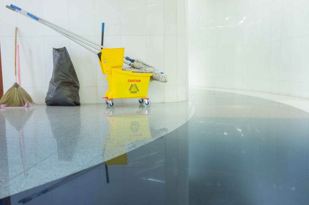 janipro floor cleaning