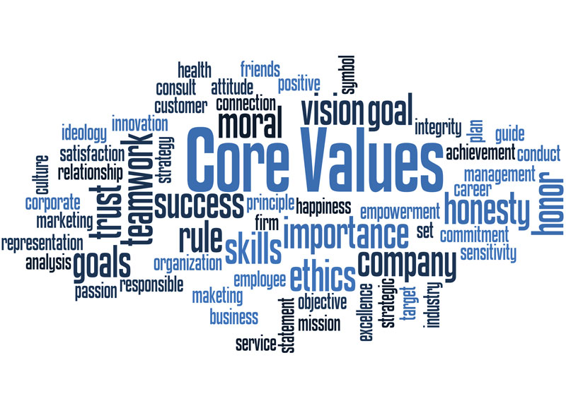 Janipro core values